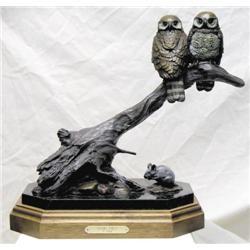 Vilem Zach - PYGMY OWL