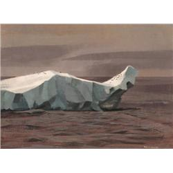 Alan Caswell Collier - HITCH-HIKING FULMARS, SOUT