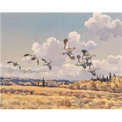 Hugh Monahan - SHARP TAILS-PEACE RIVER COUNTRY