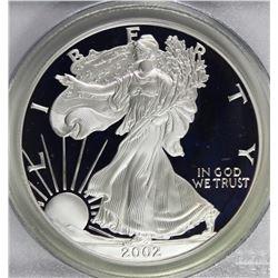 2002-W AMERICAN SILVER EAGLE