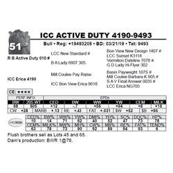 ICC ACTIVE DUTY 4190-9493