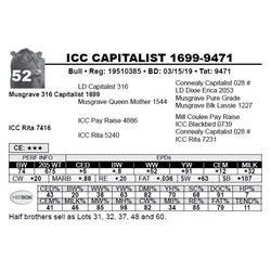 ICC CAPITALIST 1699-9471