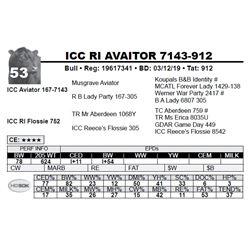 ICC RI AVAITOR 7143-912