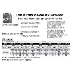 ICC RI/GW CAVALRY 428-961