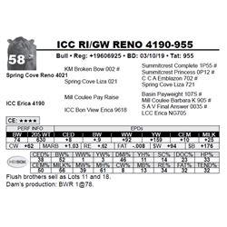 ICC RI/GW RENO 4190-955