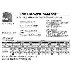 ICC HOOVER DAM 9521