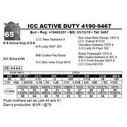 ICC ACTIVE DUTY 4190-9467