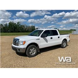 2011 FORD F150 CREW CAB PICKUP