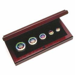 2003 Canada Hologram 5-coin Fine Silver Maple Leaf Set (1oz capsule has a scratch, 1/20oz coin has 2