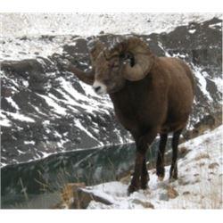 Cadomin Mine Tour - Alberta - 2 Person