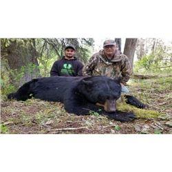 Black Bear Hunt - 2 Person - British Columbia
