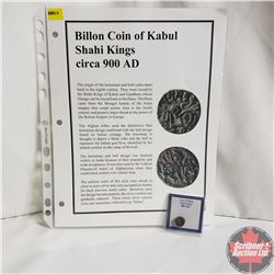 Ancient Coin: Circa 900AD, Billon Coin of Kabul, Shahi Kinds, Info Sheet