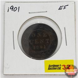 Canada Large Cent : 1901