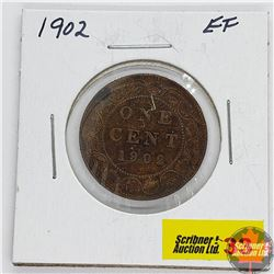 Canada Large Cent : 1902