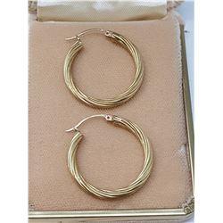 10 KT gold earrings