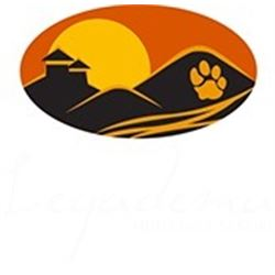 Legadema Safaris- African Plainsgame Hunt