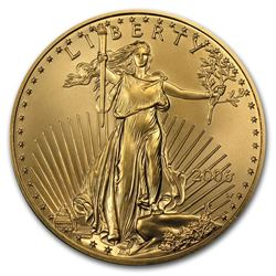 2006-W 1 oz Burnished Gold Eagle (Capsule Only)