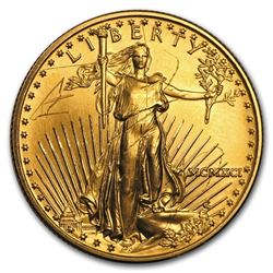 1991 1/2 oz Gold American Eagle (Abrasions)