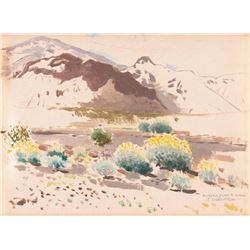 James Swinnerton, oil on canvasboard
