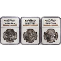 Lot of 1883-O to 1885-O $1 Morgan Silver Dollar Coins NGC Brilliant Uncirculated