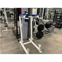 WHITE APEX AB LEG RAISE BENCH