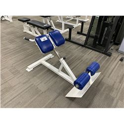 WHITE APEX BACK EXTENSION BENCH