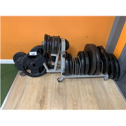 ASSORTED WEIGHT PLATES & MOBILE WEIGHT RACK