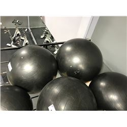PAIR OF ASSORTED SIZED EXERCISE BALLS