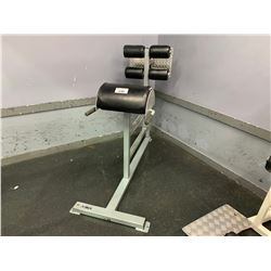 APEX BACK EXTENSION BENCH