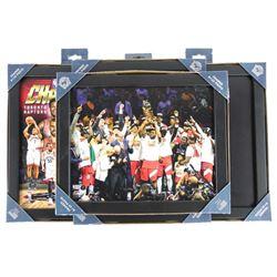 Grouping of (4) NBA Champions Toronto Raptor's 8x1
