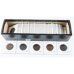Estate NFLD Collection of Silver Coins and Cents