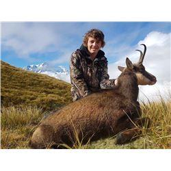 Cardrona Outfitters, 1 Chamois buck, 1 hunter, New Zealand