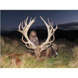 Cardrona Outfitters: new Zealand for Red Stag up to 320 SCI, Bull Tahr and Chamois Buck