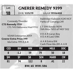 GNERER REMEDY 9399