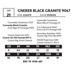 GNERER BLACK GRANITE 9067