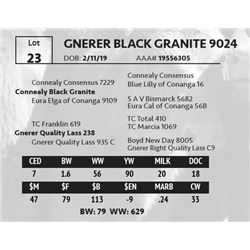 GNERER BLACK GRANITE 9024