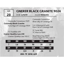 GNERER BLACK GRANITE 9024