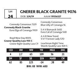 GNERER BLACK GRANITE 9076