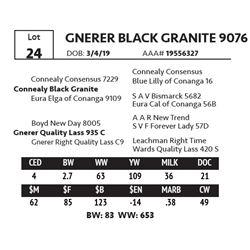 GNERER BLACK GRANITE 9076