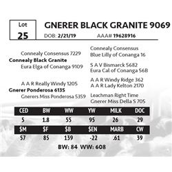 GNERER BLACK GRANITE 9069