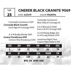 GNERER BLACK GRANITE 9069