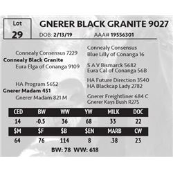 GNERER BLACK GRANITE 9027