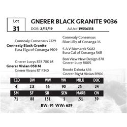 GNERER BLACK GRANITE 9036