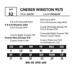 GNERER WINSTON 9575