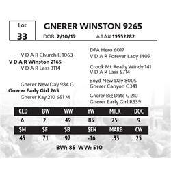 GNERER WINSTON 9265