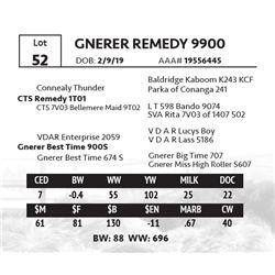 GNERER REMEDY 9900