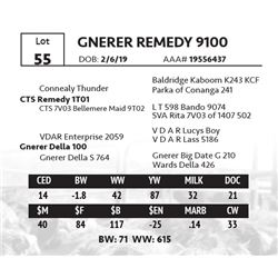 GNERER REMEDY 9100