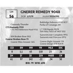 GNERER REMEDY 9048