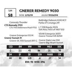 GNERER REMEDY 9030