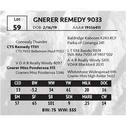 GNERER REMEDY 9033